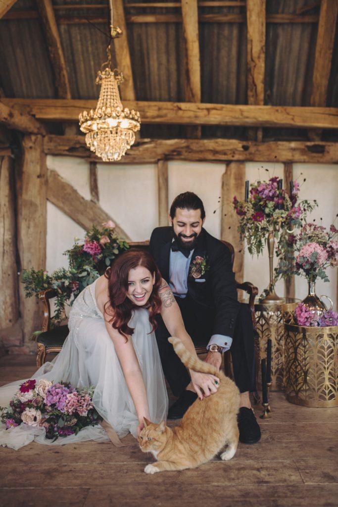 fun wedding photo with cat