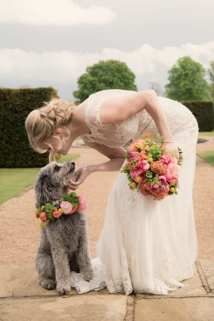 bride with dog that has flower collar